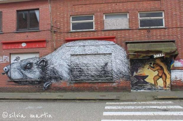 Doel_Belgium_11